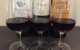 对比试酒 - 意大利的Bordeaux Blend vs 法国波尔多 Super Tuscan vs Bordeaux