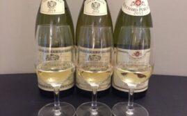 对比试酒 - 勃艮第酒 Pouilly-Fuisse vs Savigny-Les-Beaune vs Montagny