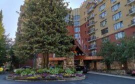 酒店体验 - Hilton Whistler Resort & Spa,顺便介绍一下酒店的防疫措施