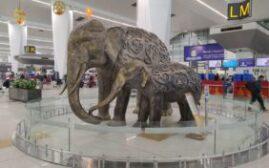 环球游记 - 印度初印象,德里机场(Delhi IGI Airport)的入境和出境见闻