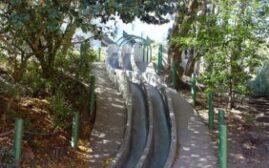 旧金山的Seward Mini Park超长滑梯,一个非常适合小小孩的旅游景点