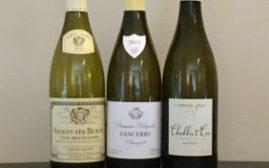 对比试酒 - Burgundy勃艮第 vs Sancerre桑塞尔