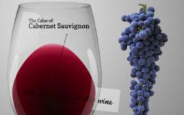 介绍Cabernet Sauvignon赤霞珠,以及不同价位对酒品质的影响
