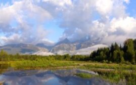 黄石之旅 - 第六天,Schwabachers Landing,大盐湖,羚羊岛