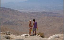 加州游记 - 第八天,约书亚树国家公园Joshua Tree National Park,Desert Hills Premium Outlets