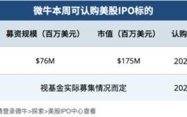 微牛美股 - IPO周报 2021/02/08 -02/19