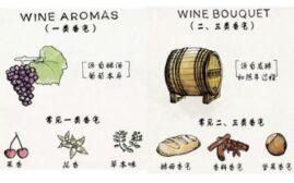 葡萄酒品鉴入门 - 如何通过对香气偏好分辨出新手小白和品酒大师