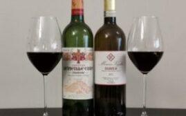 对比试酒 - 法国波尔多和意大利巴罗洛,那一款红酒的性价比更高一些