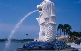 新加坡30种必试的美食和餐厅推荐
